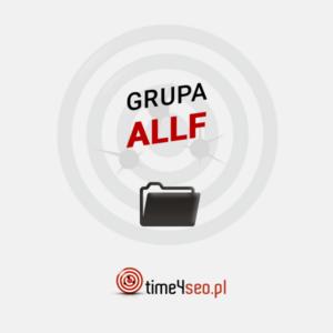 katalogowanie-grupa-allf